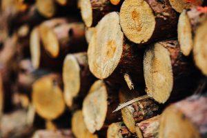 Astuces choix bois de chauffage
